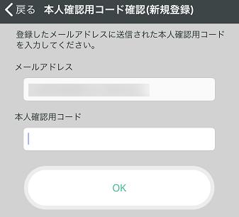 登録したメールアドレスと送付されてきた本人確認コードで認証します。